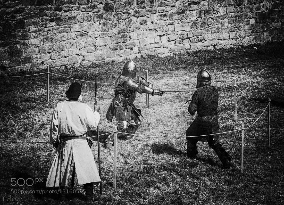 Photograph Knight fight by Felice V. on 500px