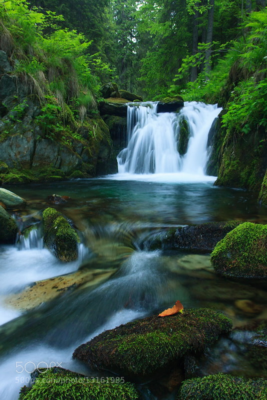 Photograph Small waterfall on the Buta river by Plosz Zoltán on 500px
