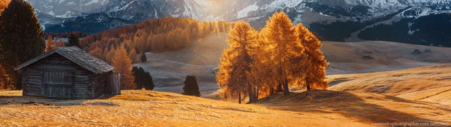 Italy. Dolomites. Morning light on the plateau ALPE DI SIUSI by Aleksandr Naumenko on 500px.com