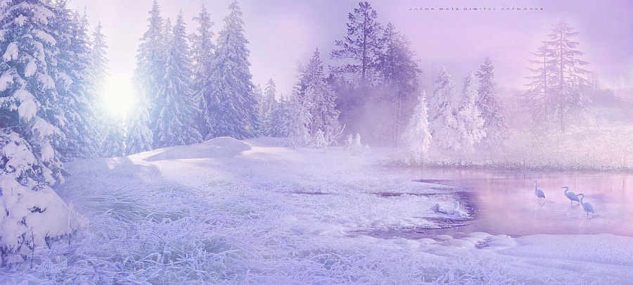 ~ The whispers of winter ~ by Jasna Matz on 500px.com