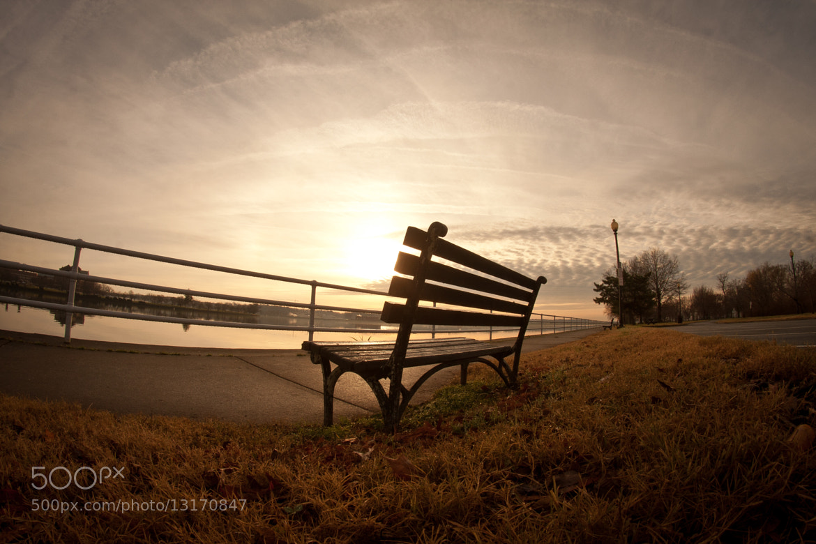 Photograph East Potomac Park Bench by Brendan Lilly on 500px