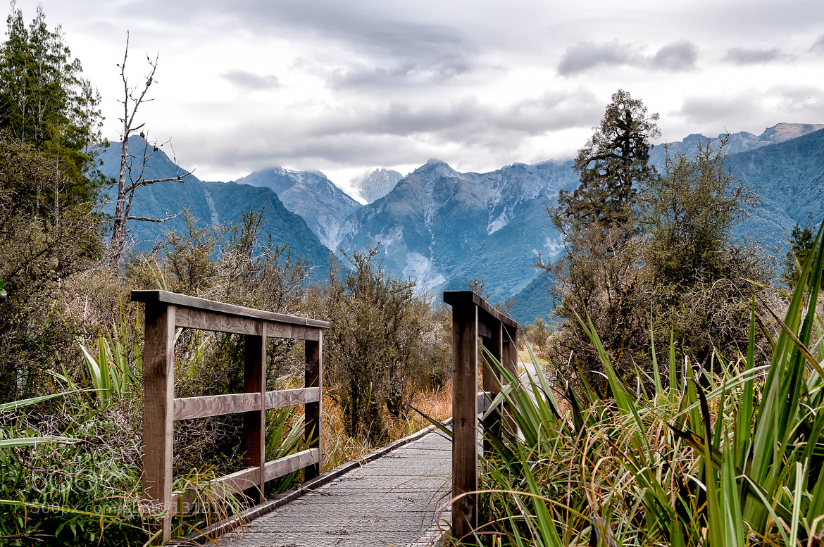 Photograph Lake Matheson Walkway by Martin Tyler on 500px
