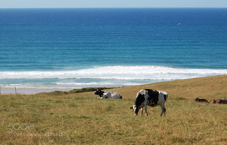 Photograph Con vistas al mar by Jennifer Carmona Chacón on 500px