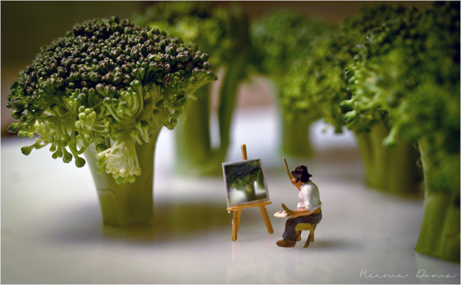 Photograph tiny world by Neema Doma on 500px