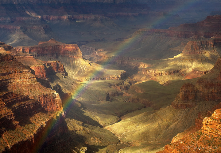 Photograph Royal Rainbow by Peter James Nature Photography  on 500px