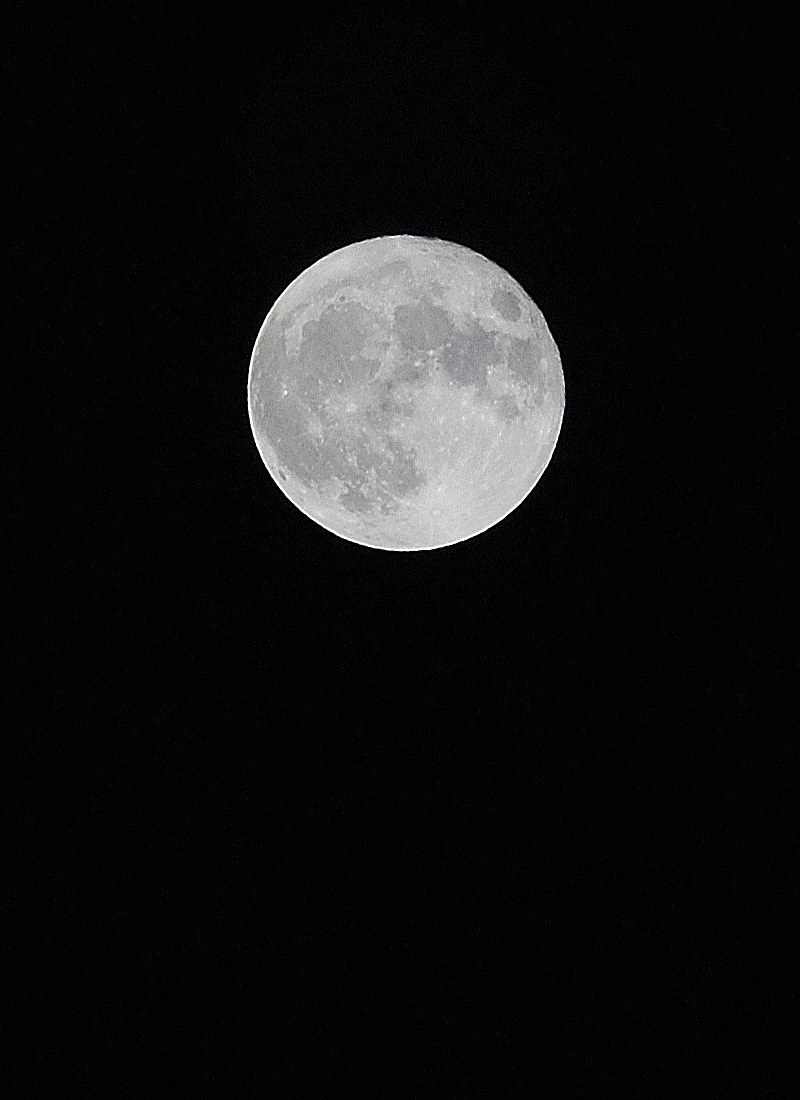 Photograph Moon by Kristina Servant on 500px