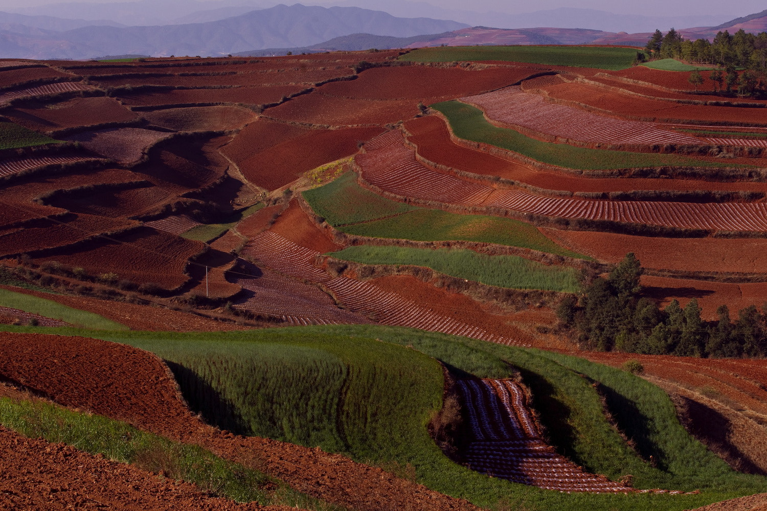 Photograph Red Land - China by SIJANTO NATURE on 500px