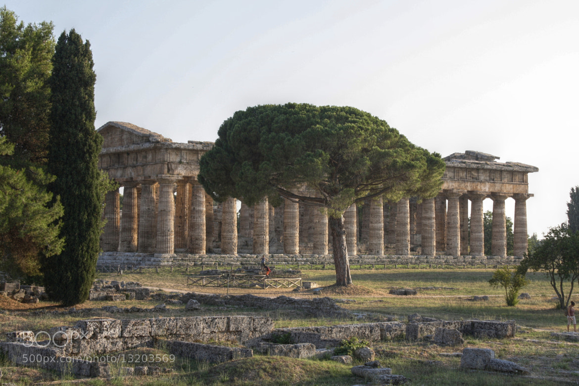 Photograph Paestum Temple at sunset by Giorgio Carraro on 500px