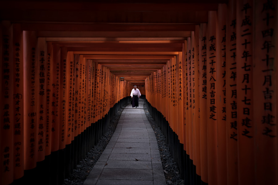 Fushimi Inari by Conor MacNeill on 500px.com