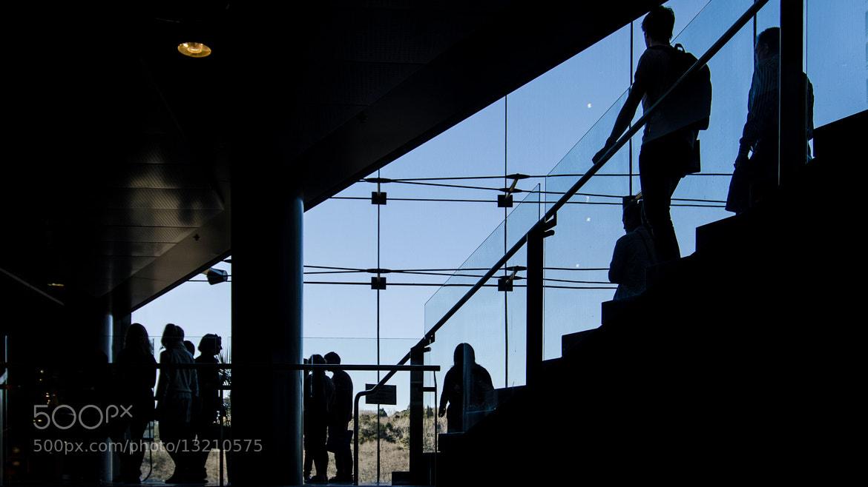 Photograph Auckland University Owen Glen Building by Chris Veale on 500px