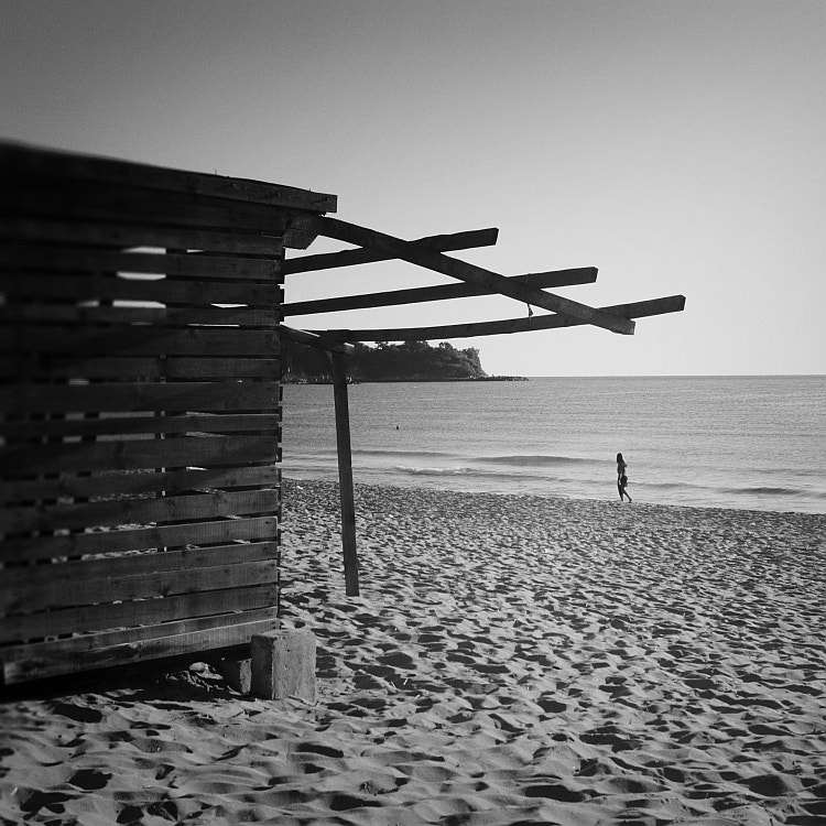 Photograph lonely morning by Vladimir Perfanov on 500px