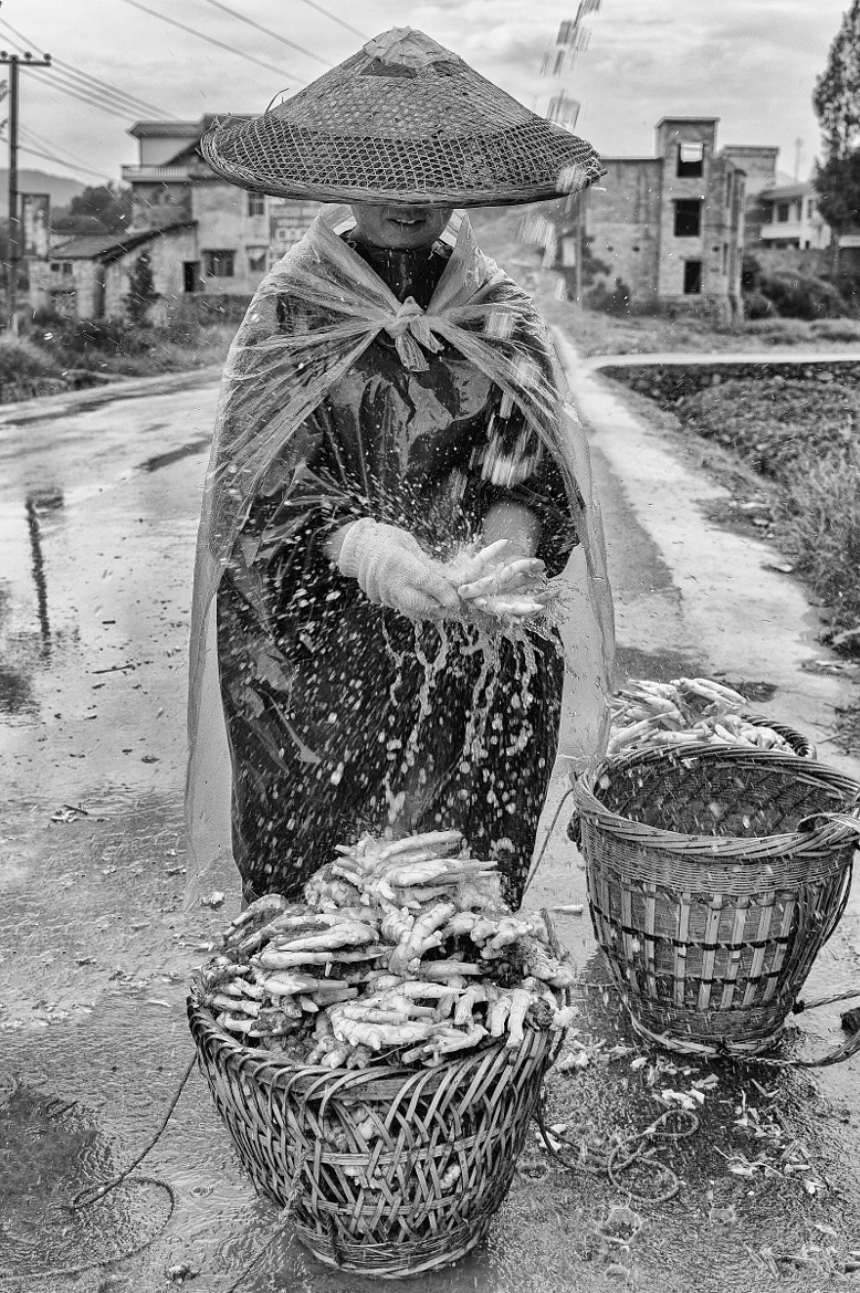Photograph Washing Ginger by Stephen Patterson on 500px