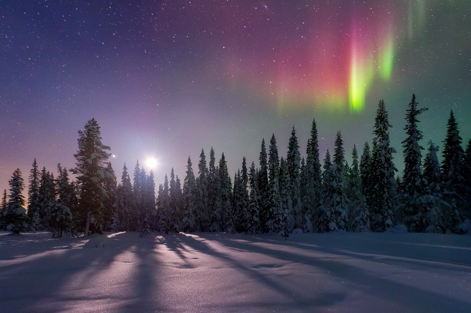 Photograph Bright Side of the Moon by Miles Morgan on 500px