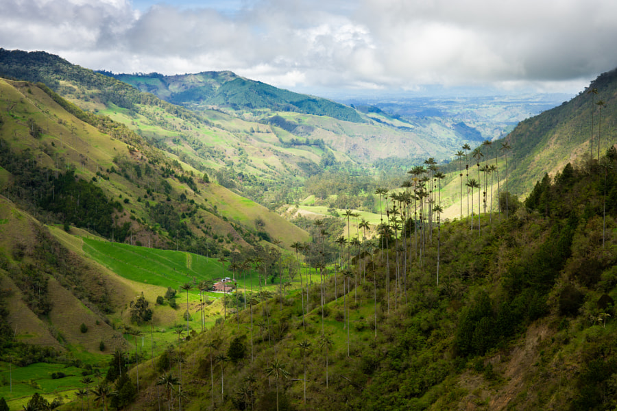 Cocora valley 3 by Kirill Trubitsyn on 500px.com