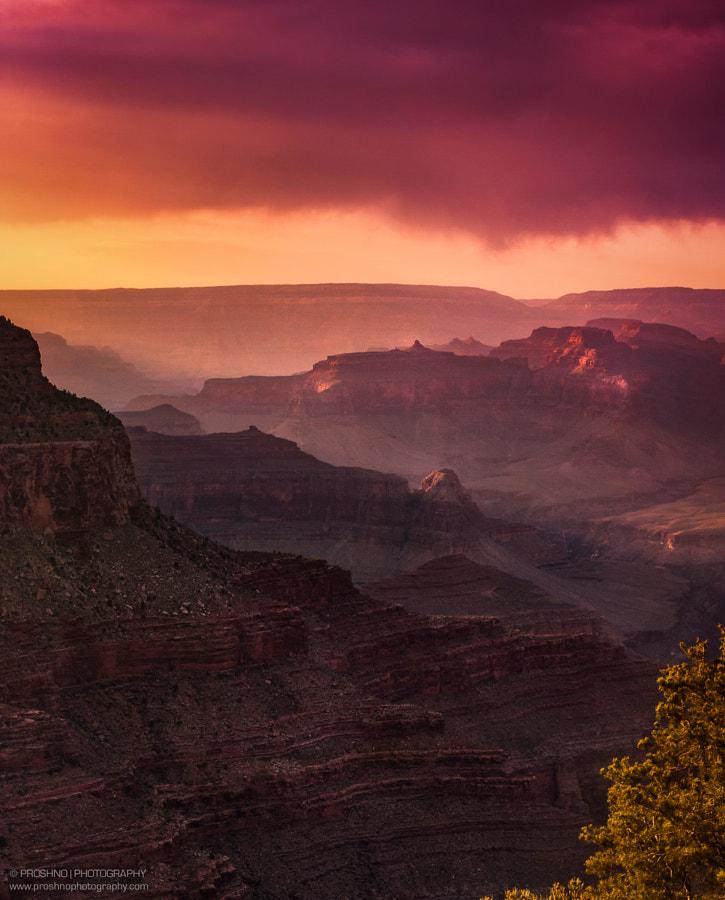 The Grand Sunset