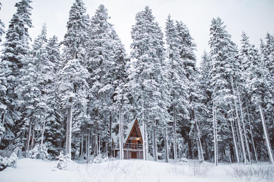 Winter getaway by Nick Carnera on 500px.com
