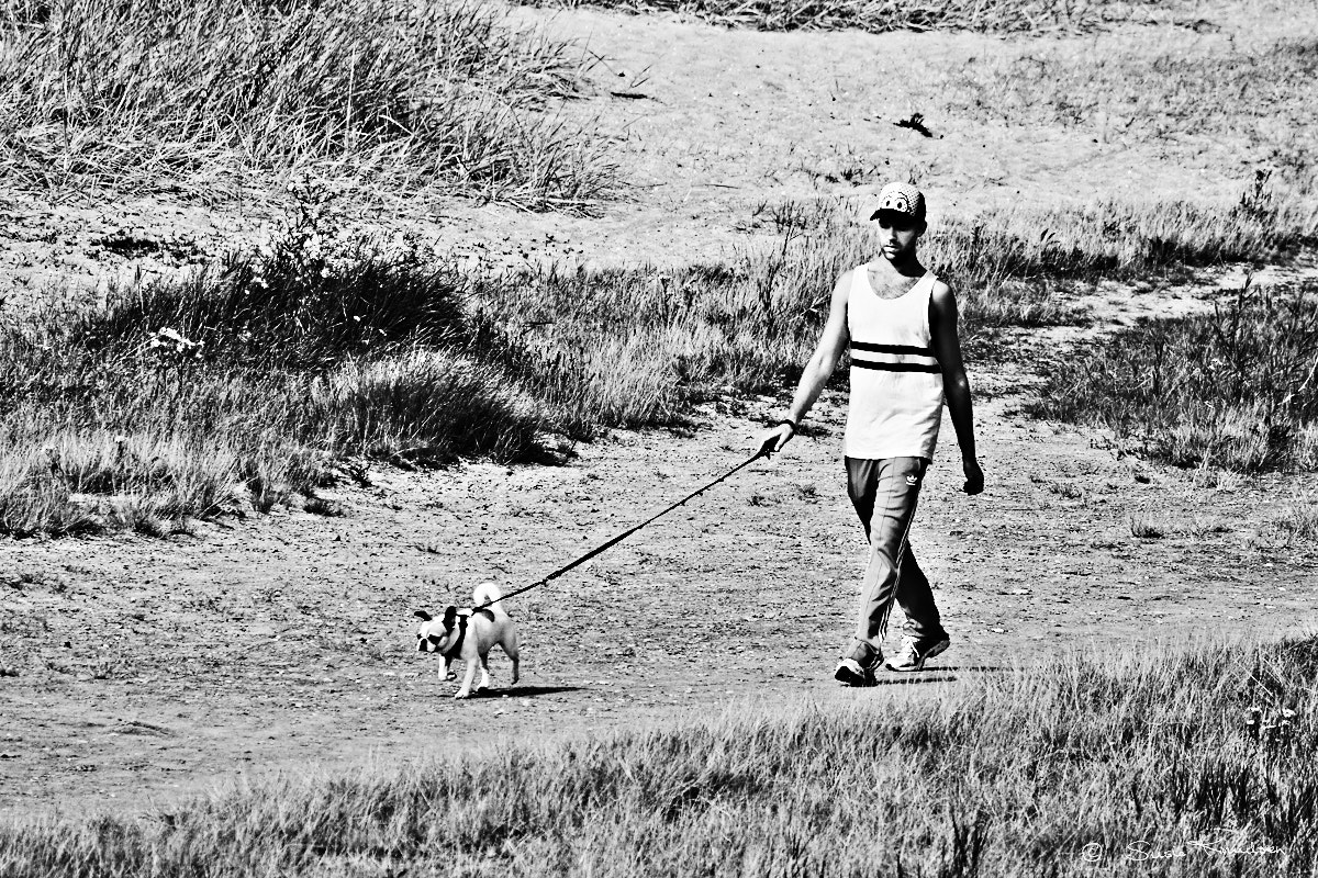 Photograph Walking the Dog by Susie Knudsen on 500px