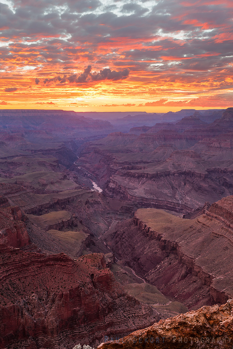 Photograph Canyon Sunset Portrait by Paul Dekort on 500px