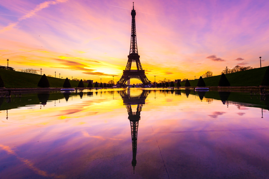 Eiffel Tower puddle mirrored at Dawn