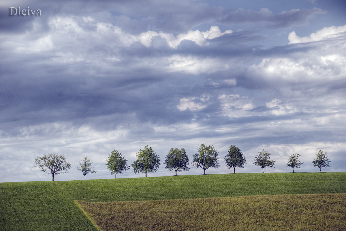 Photograph Landscape in the Black Forest, Baden-Wuerttemberg, Germany, Europe by Domingo Leiva on 500px