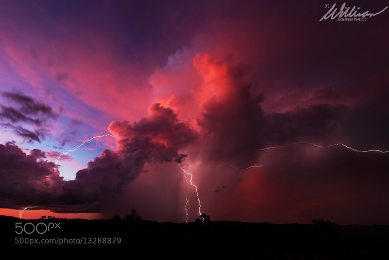 Photograph Twilight Treat by William Nguyen-Phuoc on 500px