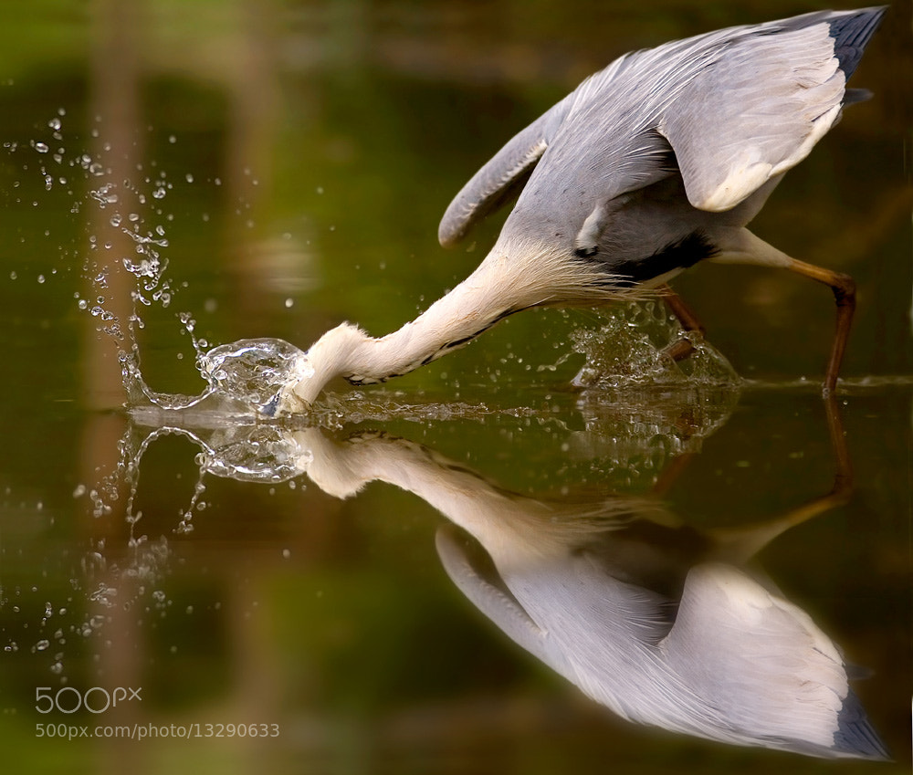 Photograph at the mirror by Stefano Ronchi on 500px