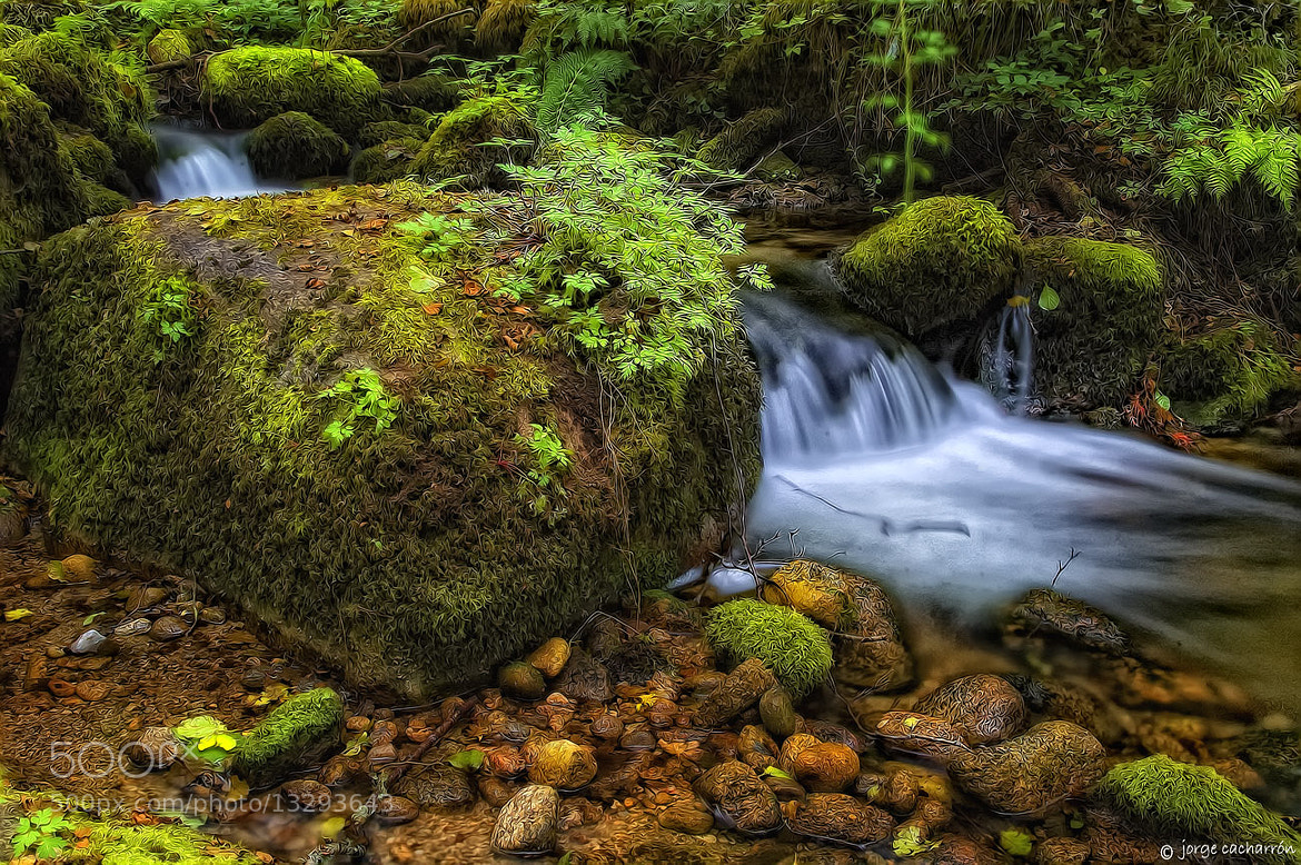 Photograph Canta el agua (XI) by Jorge Cacharrón on 500px