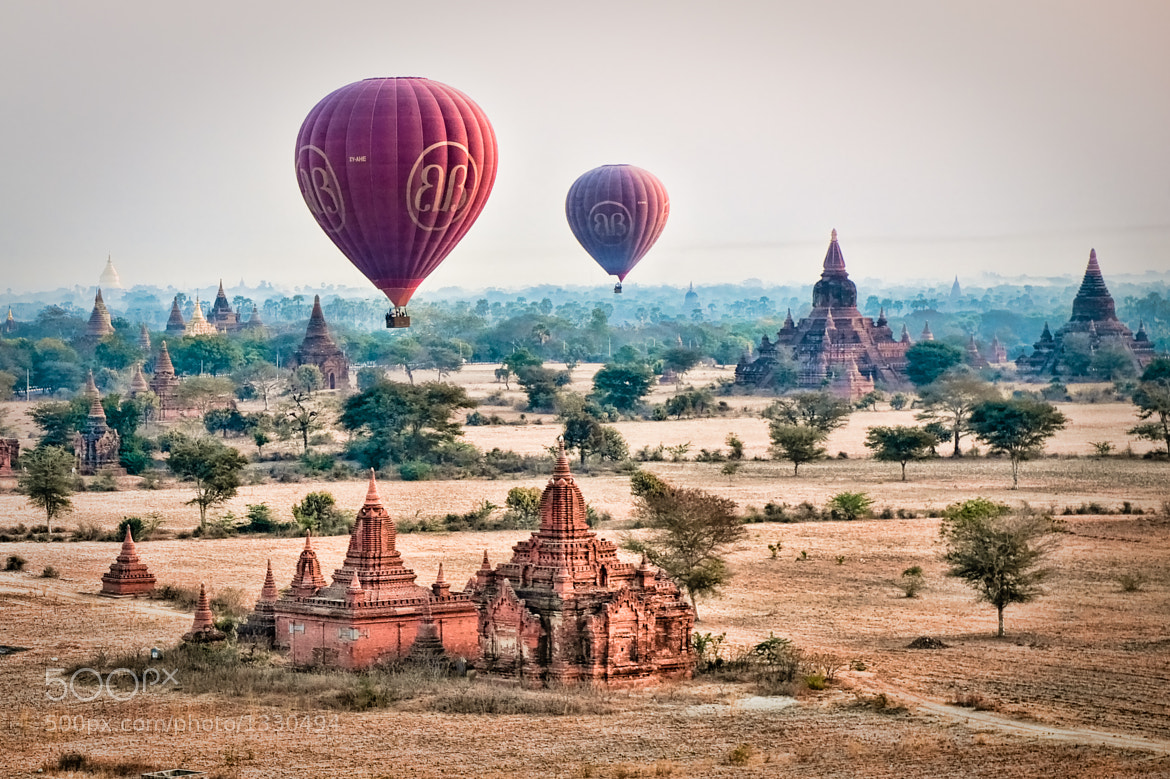 Photograph Balloons Over Bagan by Sam Gellman on 500px