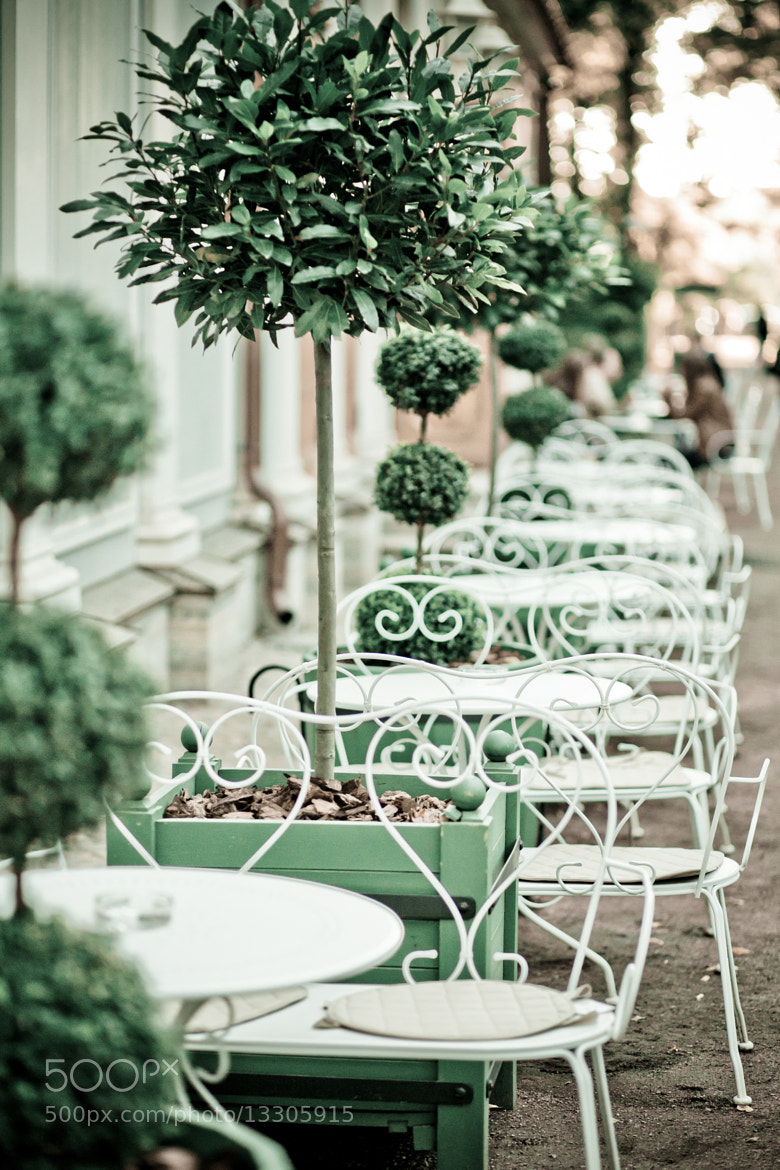 Photograph gentle cafe by Marina Chirkova on 500px