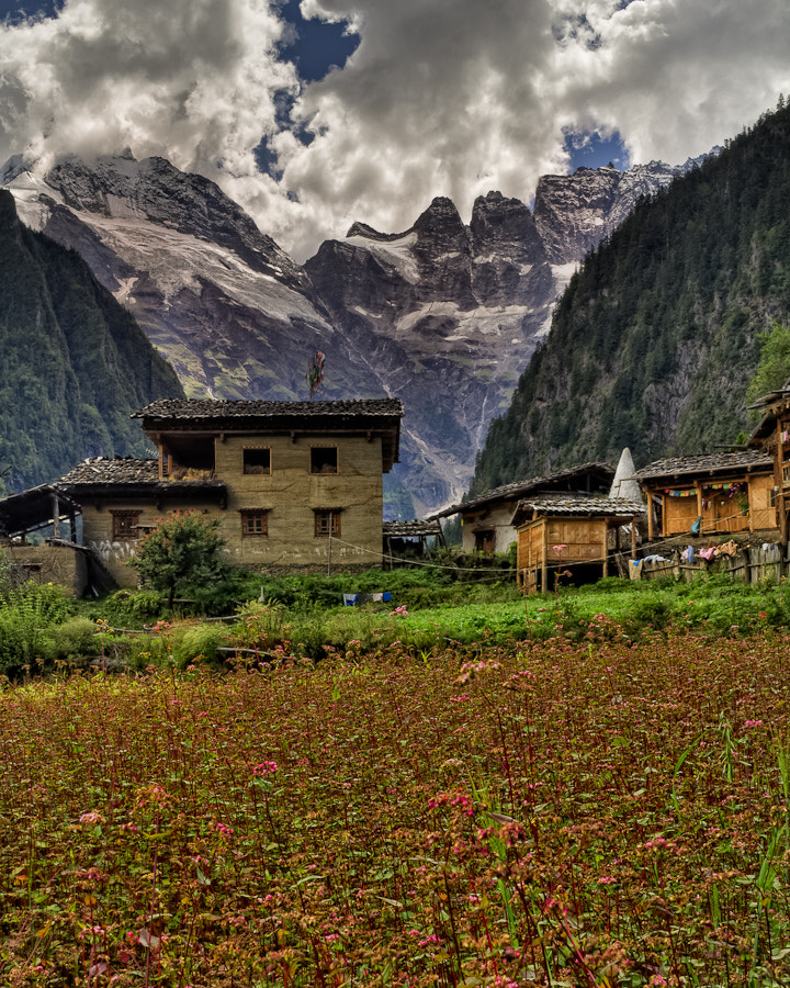 Photograph Yubeng Crops by James Wheeler on 500px