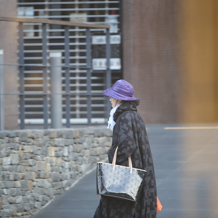 the woman, Canon EOS 6D, Canon EF 200-400mm f/4L IS USM