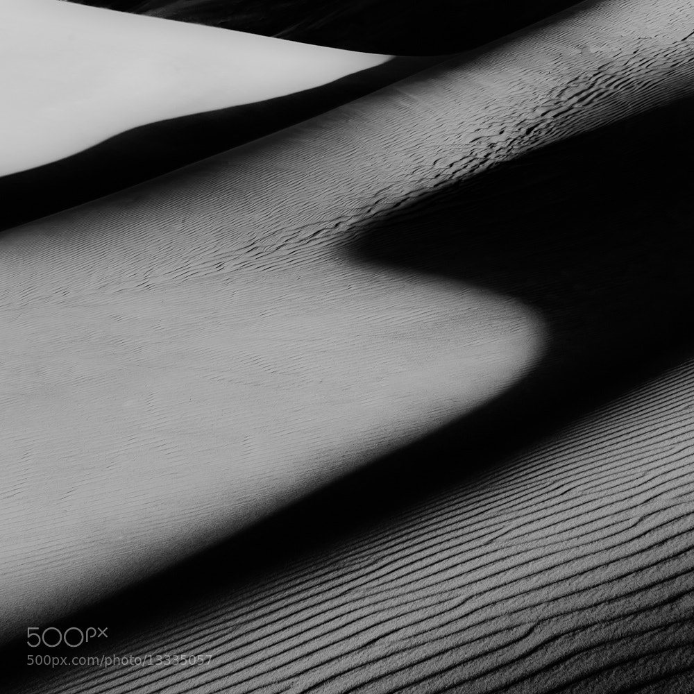 Photograph Shadows and Sand by Michael Keith Manges on 500px
