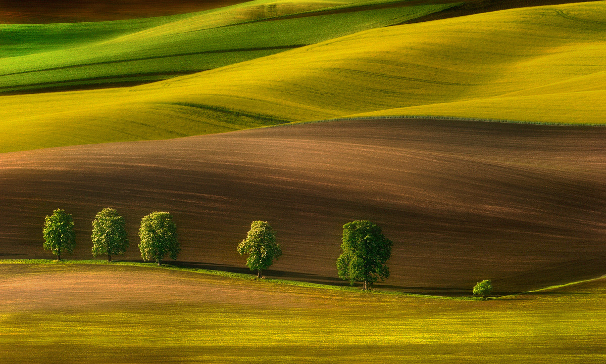 Photograph The colors of fields... by Pawel Kucharski on 500px