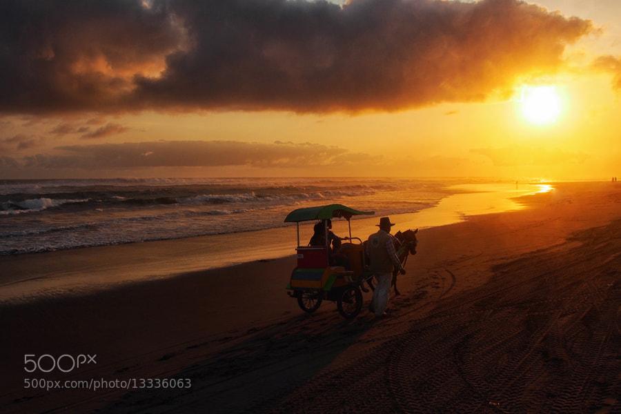 Photograph  I follow the sun..  by Prabu dennaga on 500px