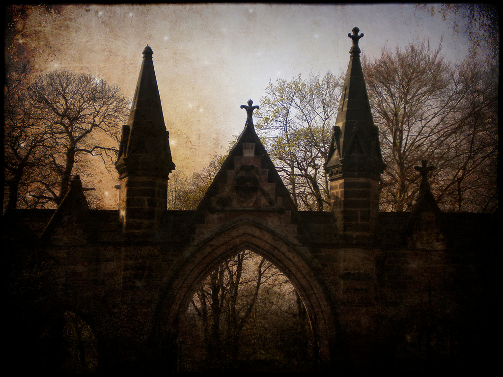 Photograph cemetary gates  by John Curry on 500px