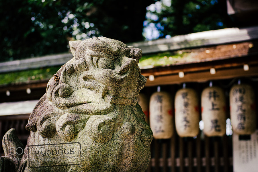 Lion,Kyoto.