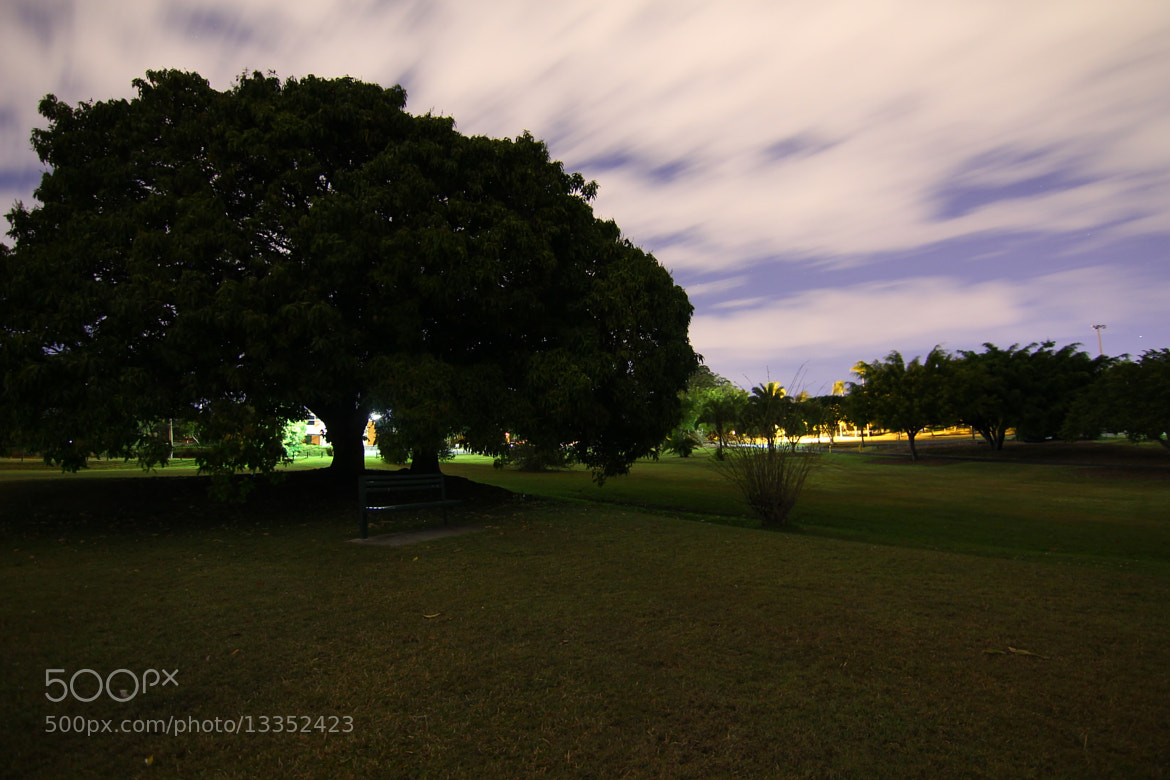 Photograph Yeronga Park by Kim, K H on 500px