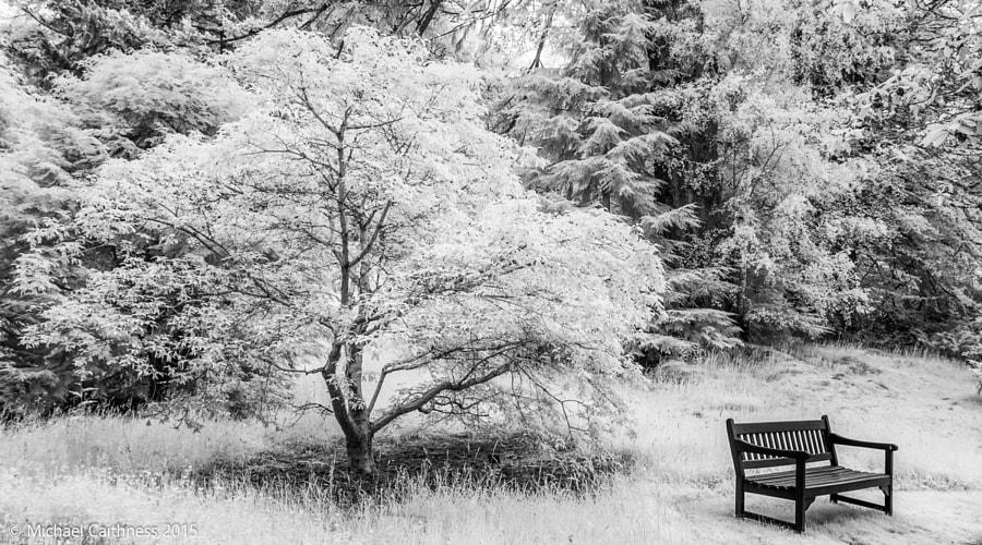 Dawyck Botanical Garden