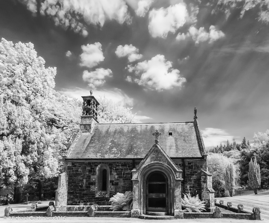 The Chapel at Dawyck Botanical Garden