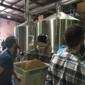 Brewing with Dogfish Head @ Nomad