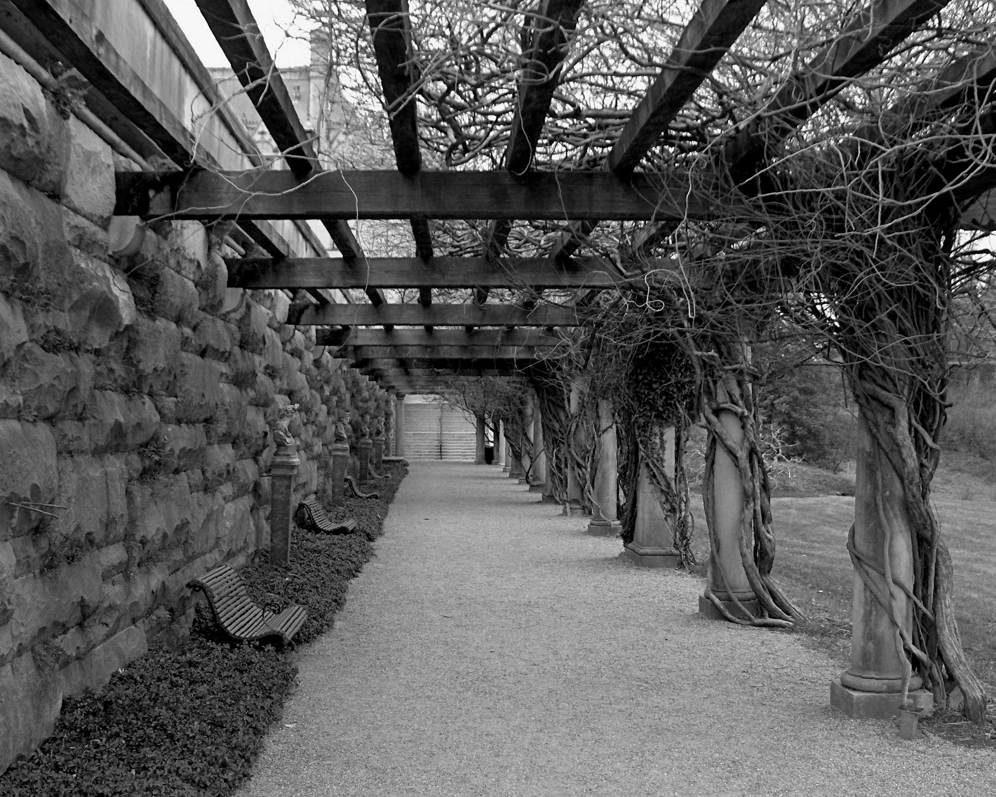 Photograph Trellis at a mountain estate by Scott Lloyd on 500px