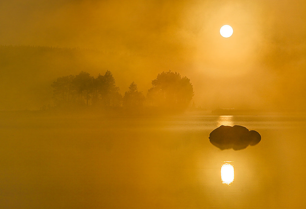 Photograph Foggy dawn by Peter Sjölund on 500px