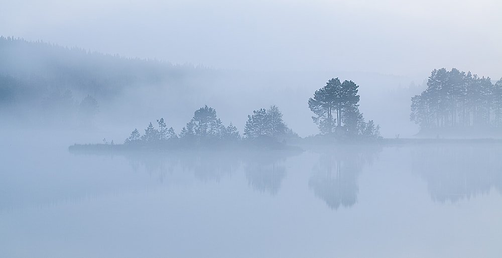 Photograph Foggy night by Peter Sjölund on 500px