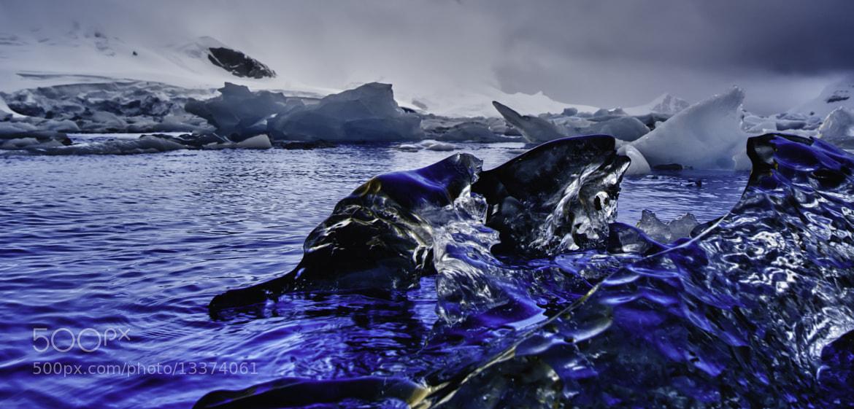 Photograph Antarctica by Michael Leggero on 500px