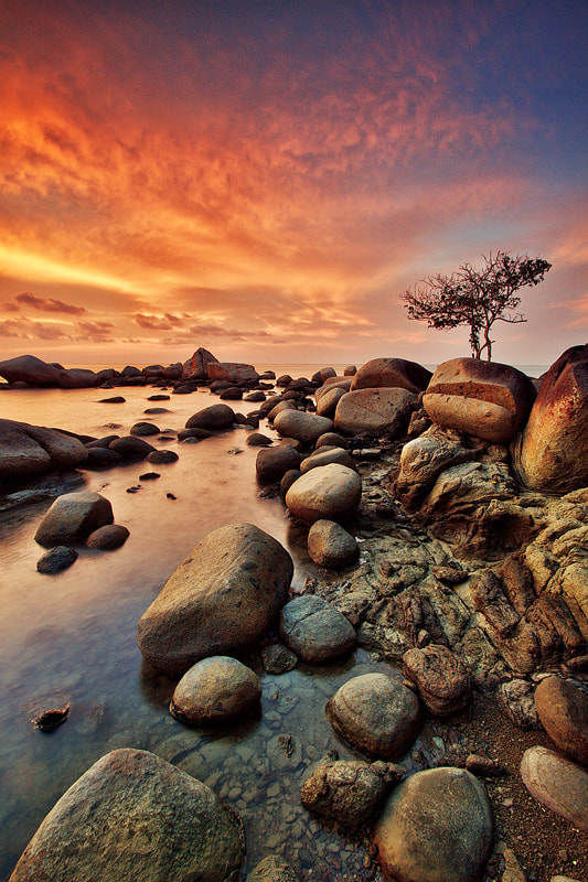 Photograph Dry Season by Bobby Bong on 500px