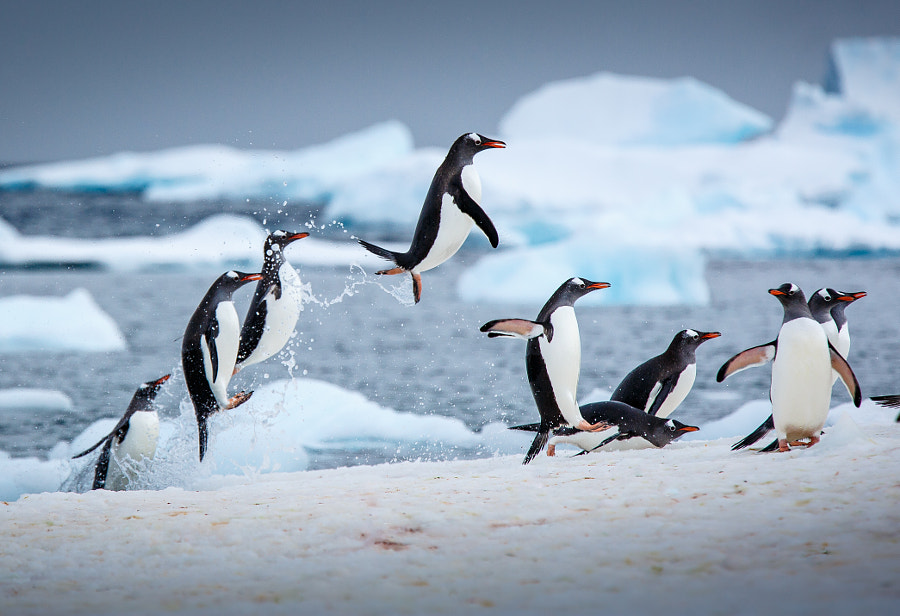 Airtime by David Merron on 500px.com