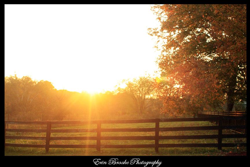 Photograph Fall Sunset by Erin Brooke on 500px