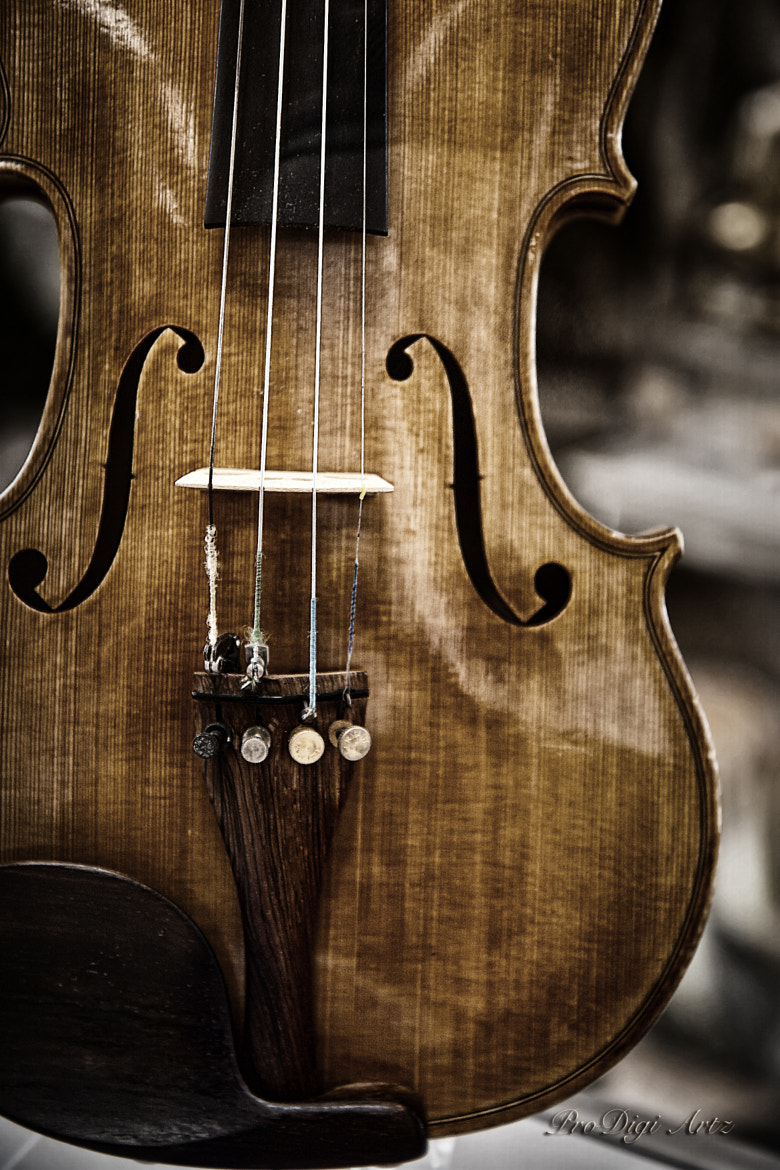 Photograph VIOLIN by Digi Ronin on 500px