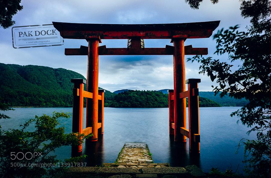 Under the Torii