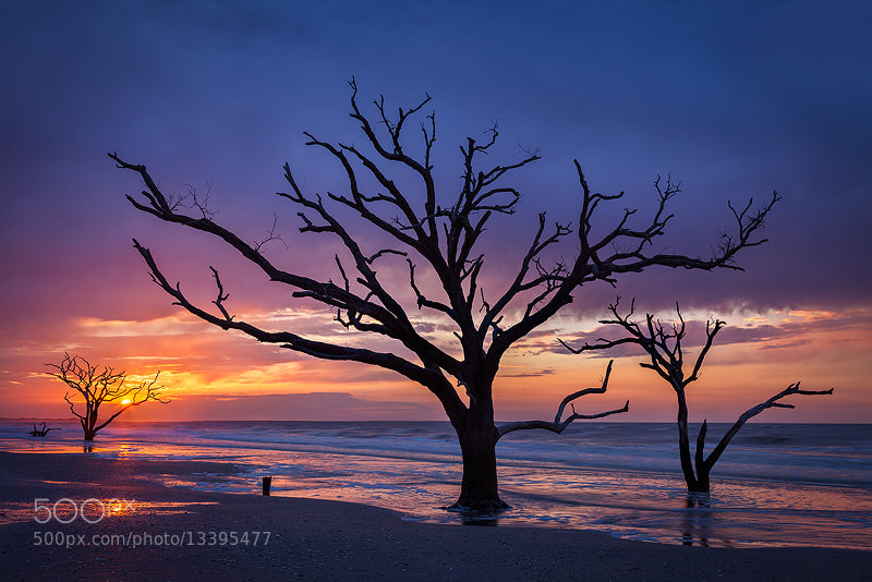 Photograph Botany Bay Sunrise  by Sarah Marino on 500px